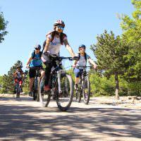 big_blue_bikes_brac_bol_03